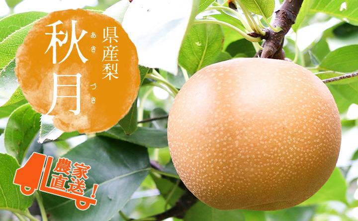 長野県産の稀少梨 秋月(あきづき)