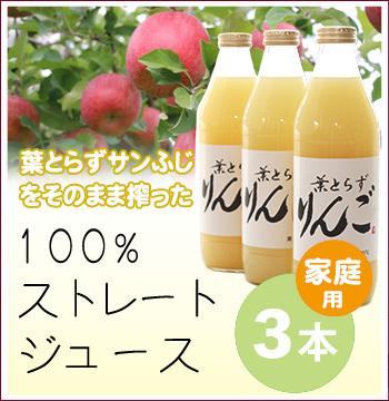 リンゴジュース(家庭用)3本