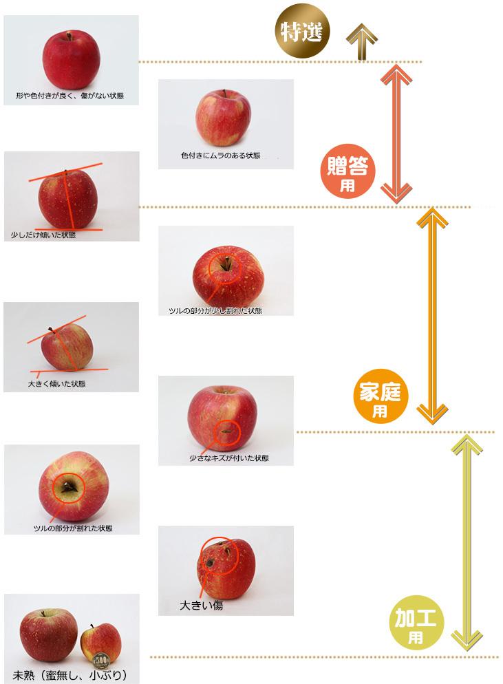 リンゴのコンディション一覧