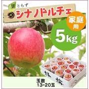 【予約】葉とらずシナノドルチェ[家庭用りんご5kg(15~20玉)商品番号:D105]