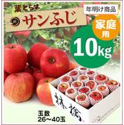【10%OFF】年明け!葉とらずサンふじ[家庭用りんご10kg(26~40玉)商品番号:F100]