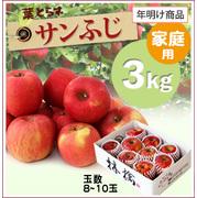 【10%OFF】年明け!葉とらずサンふじ[家庭用りんご3kg(8~10玉)商品番号:F103]