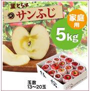 【予約】葉とらずサンふじ[家庭用りんご5kg(13~20玉)商品番号:F105]