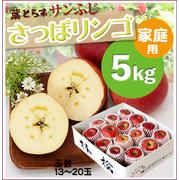 『寄付つき』《さっぱリンゴ!》葉とらずサンふじ[家庭用5kg(13~20玉)商品番号:F145]