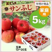 【10%OFF】年明け!葉とらずサンふじ[家庭用りんご5kg(13~20玉)商品番号:F105]