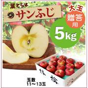 【予約】蜜入り!葉とらずサンふじ[贈答用《大玉》りんご5kg(11~13玉)商品番号:F215]