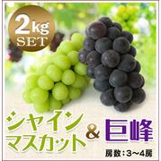 【予約】朝採りぶどう!シャインマスカット&巨峰セット[2kg(3~4房)商品番号:BM212]