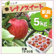 【予約】葉とらずシナノスイート[家庭用りんご5kg(15~20玉)商品番号:W105]