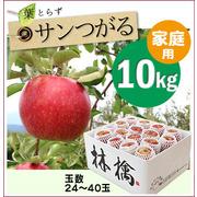 【予約】葉とらずサンつがる[家庭用りんご10kg(32~40玉)商品番号:T100]
