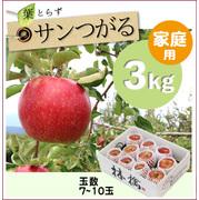 【予約】葉とらずサンつがる[家庭用りんご3kg(7~10玉)商品番号:T103]