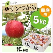 【予約】葉とらずサンつがる[家庭用りんご5kg(15~20玉)商品番号:T105]