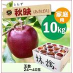 【予約】葉とらず秋映[家庭用りんご10kg(30~40玉)商品番号:A100]