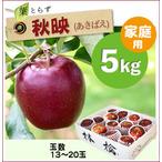 【予約】葉とらず秋映[家庭用りんご5kg(15~20玉)商品番号:A105]