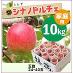 【予約】葉とらずシナノドルチェ[家庭用りんご10kg(30~40玉)商品番号:D100]
