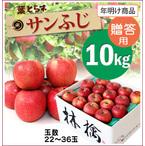 【10%OFF】年明け!葉とらずサンふじ[贈答用りんご10kg(22~36玉)商品番号:F200]