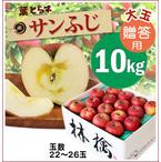 【予約】蜜入り!葉とらずサンふじ[贈答用《大玉》りんご10kg(22~26玉)商品番号:F210]