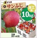 【10%OFF】加工用葉とらずサンふじ[訳ありりんご10kg(26~40玉)商品番号:F300]