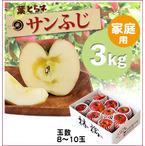 【予約】葉とらずサンふじ[家庭用りんご3kg(8~10玉)商品番号:F103]