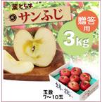 【予約】蜜入り!葉とらずサンふじ[贈答用りんご3kg(7~10玉)商品番号:F203]