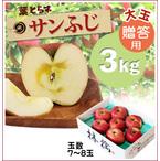 【予約】蜜入り!葉とらずサンふじ[贈答用《大玉》りんご3kg(7~8玉)商品番号:F213]