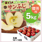 【予約】蜜入り!葉とらずサンふじ[贈答用りんご5kg(11~18玉)商品番号:F205]