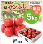 【10%OFF】年明け!葉とらずサンふじ[贈答用りんご5kg(11~18玉)商品番号:F205]