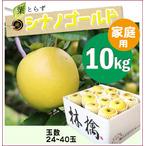 【予約】葉とらずシナノゴールド[家庭用りんご10kg(30~40玉)商品番号:G100]