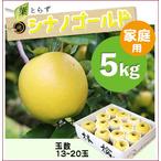 【予約】葉とらずシナノゴールド[家庭用りんご5kg(15~20玉)商品番号:G105]