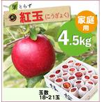 【予約】葉とらず紅玉[家庭用りんご4.5kg(18~21玉)商品番号:K105]