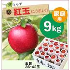 【予約】葉とらず紅玉[家庭用りんご9kg(36~42玉)商品番号:K100]
