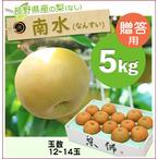 【予約】長野県産の稀少梨!南水(なんすい)[約5kg(12~14玉)商品番号:NN105]