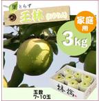 【予約】葉とらず王林[家庭用りんご3kg(7~10玉)商品番号:R103]