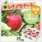 【予約】葉とらずシナノスイート[家庭用りんご3kg(7~10玉)商品番号:W103]