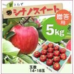 【予約】葉とらずシナノスイート[贈答用りんご5kg(14~18玉)商品番号:W205]