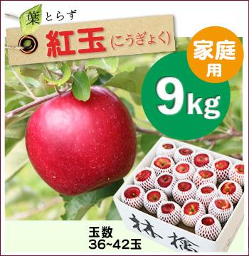葉とらず紅玉9キロ