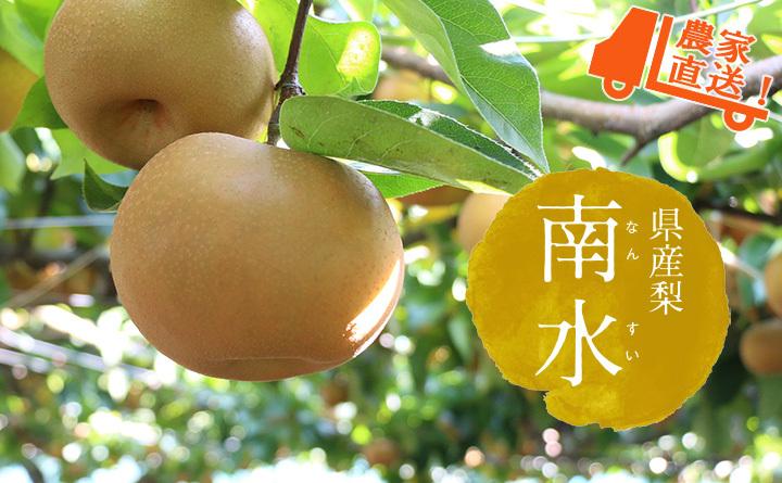 長野県産の稀少梨 南水(なんすい)
